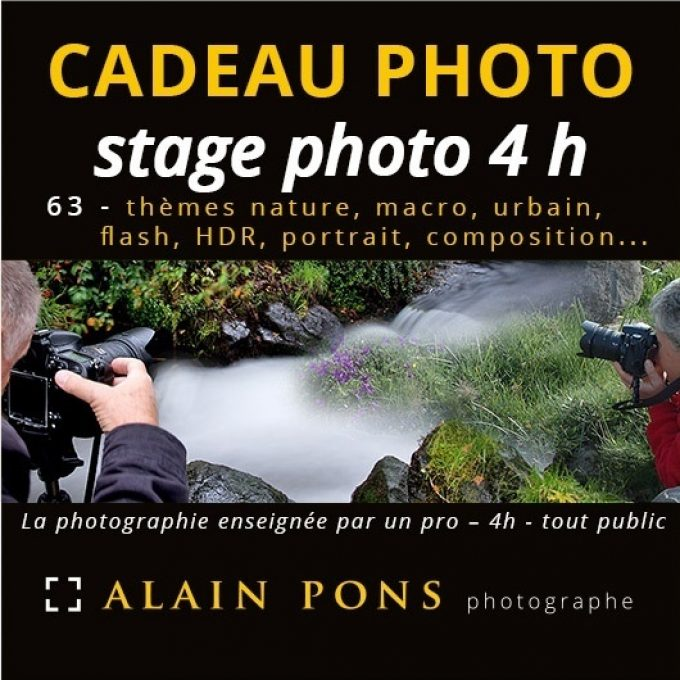 Coupon cadeau formation photo